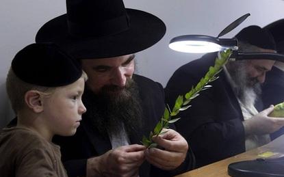6 cách dạy con ngược đời làm nên những đứa trẻ thông minh của cha mẹ Do Thái