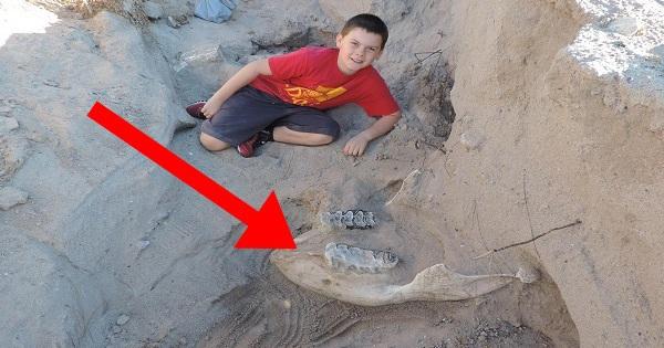 Bé trai 9 tuổi tưởng mình vấp phải đá nhưng không ngờ lại là báu vật vô giá
