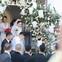 Khoảnh khắc hiếm, cô dâu Bảo Thy cùng chú rể Phan Lĩnh chính thức lộ diện trong ngày trọng đại