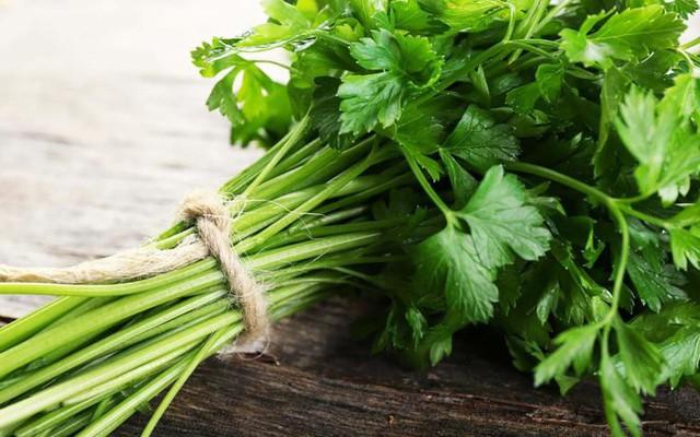 Image result for mùi tây