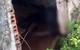 Phát hiện thi thể người đàn ông miệng nhét giẻ trong căn nhà hoang