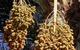 Có thể bạn không biết những rau củ quen thuộc này được gieo trồng như thế nào