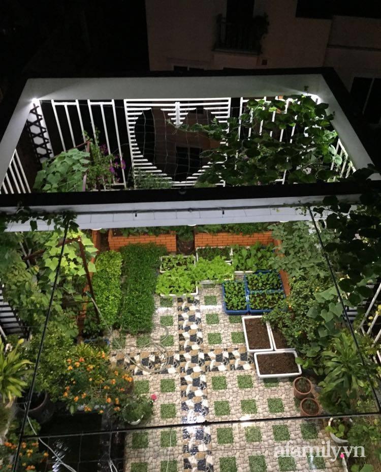 Sân thượng 70m2 phủ kín rau quả sạch do người chồng đảm đang chăm sóc hàng ngày ở Hoàng Mai, Hà Nội - Ảnh 6.
