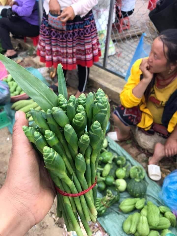 Rộ mùa hoa gừng Sơn La sốt sình sịch chợ mạng, tiểu thương ngày bán cả tạ - Ảnh 3.