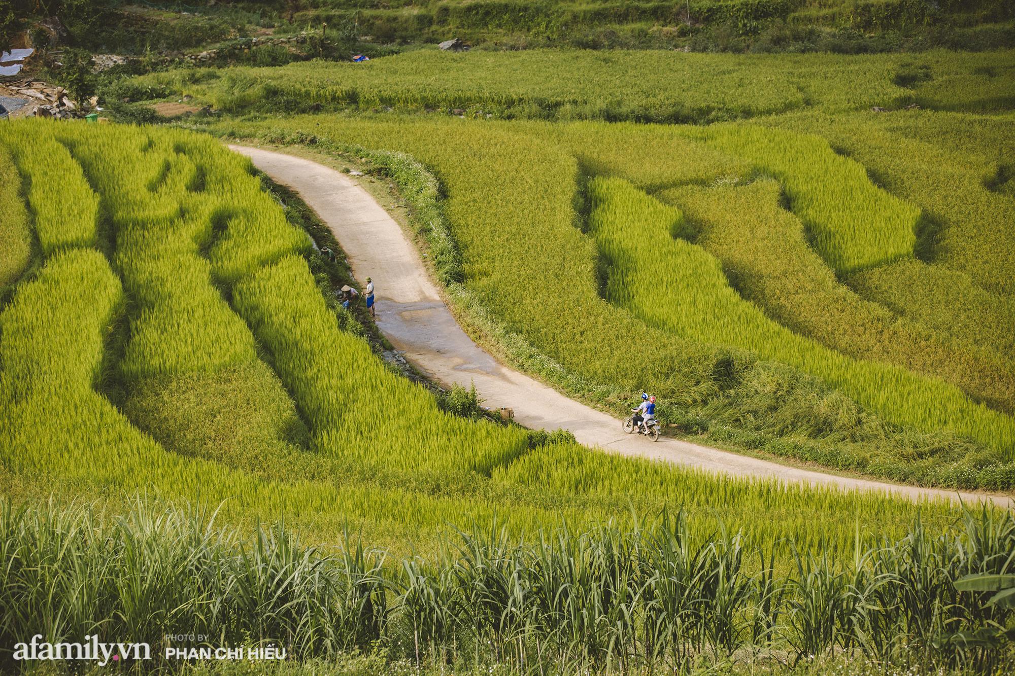 Đến với Pù Luông đâu chỉ để săn mùa lúa chín, mà còn là những trải nghiệm cực kỳ thú vị không phải nơi vùng cao nào cũng có - Ảnh 2.