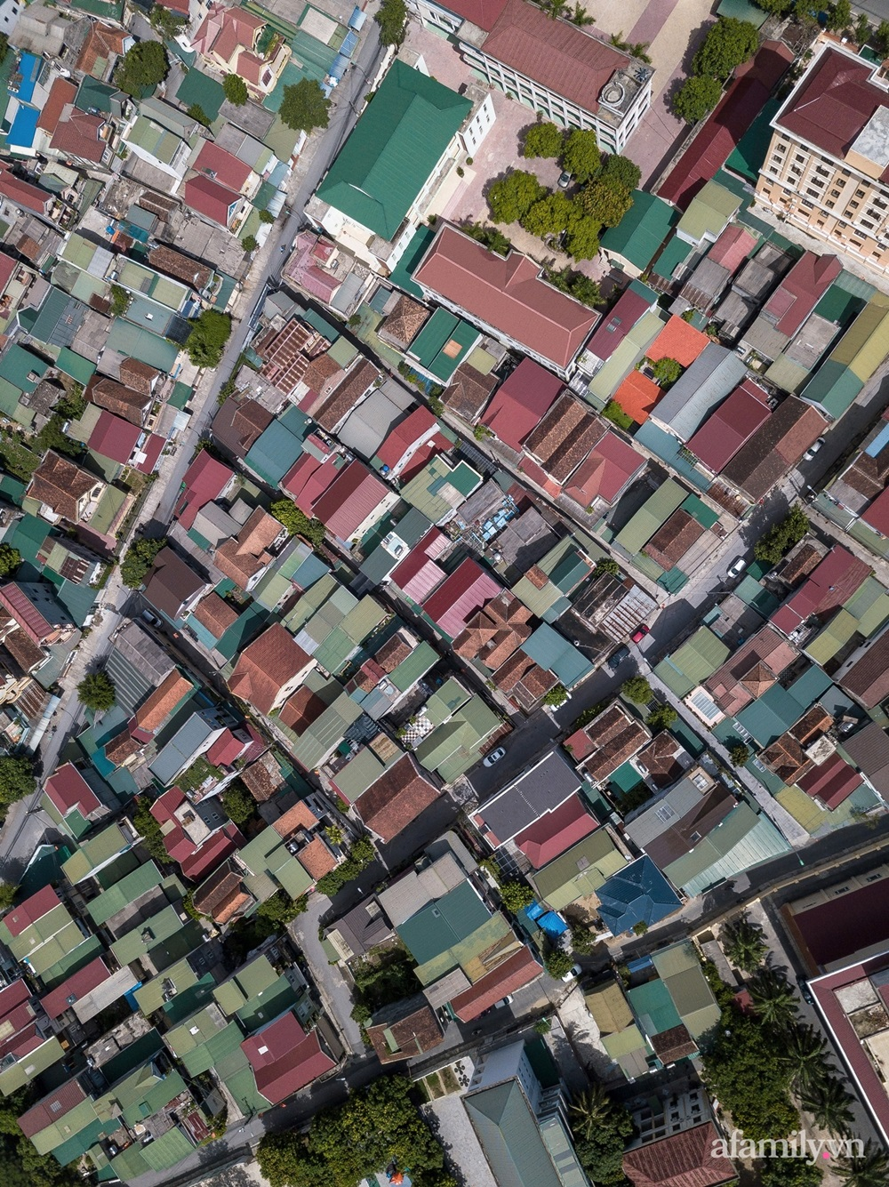12107076438474805619518146975886748707939538o 160290262555811188635 - Ngôi nhà màu xanh mát mắt không cần dùng đến điều hòa ở giữa thành phố của gió Lào và nắng cháy – Vinh, Nghệ An