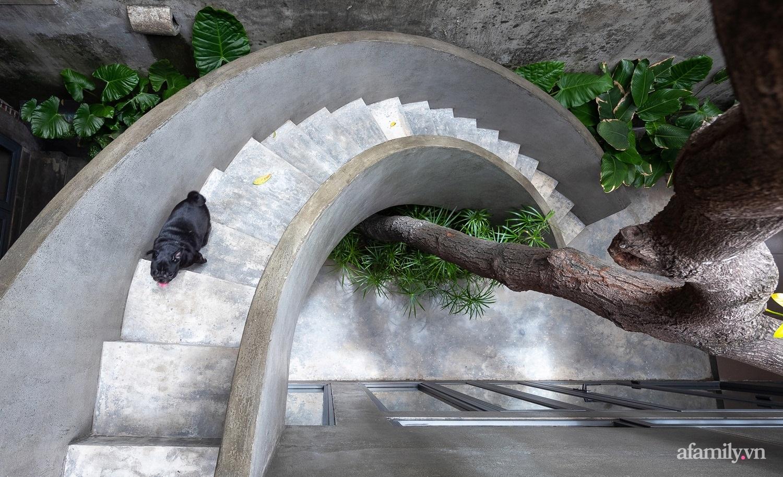 Ngôi nhà màu xanh mát mắt không cần dùng đến điều hòa tọa lạc ngay giữa thành phố của gió Lào và nắng cháy – Vinh - Ảnh 10.