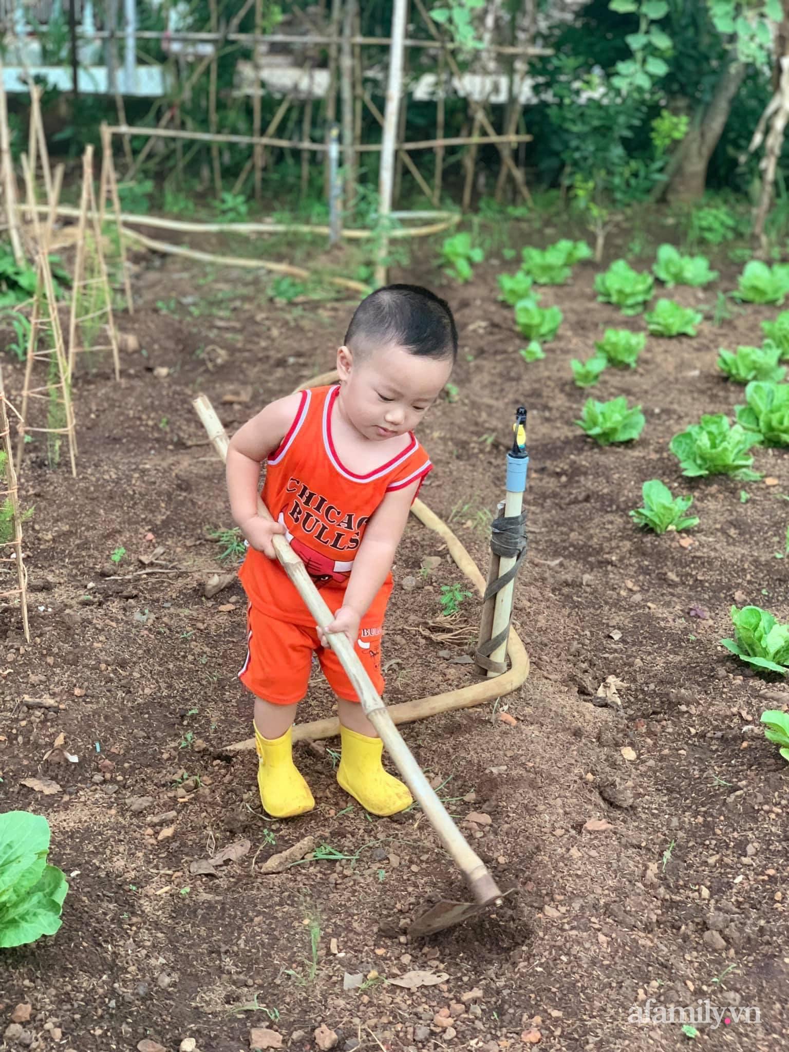 Khu vườn quanh năm ngập tràn cây lá được chăm chút mỗi ngày của gia chủ yêu thiên nhiên ở TP. Buôn Mê Thuột - Ảnh 8.