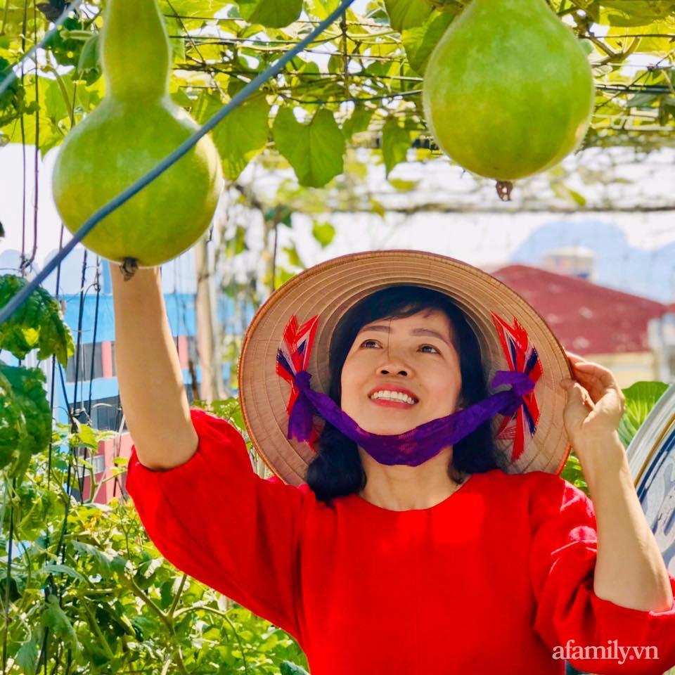Cách trồng cải kale tốt tươi ngập tràn sân thượng của người phụ nữ đảm ở Quảng Ninh - Ảnh 5.