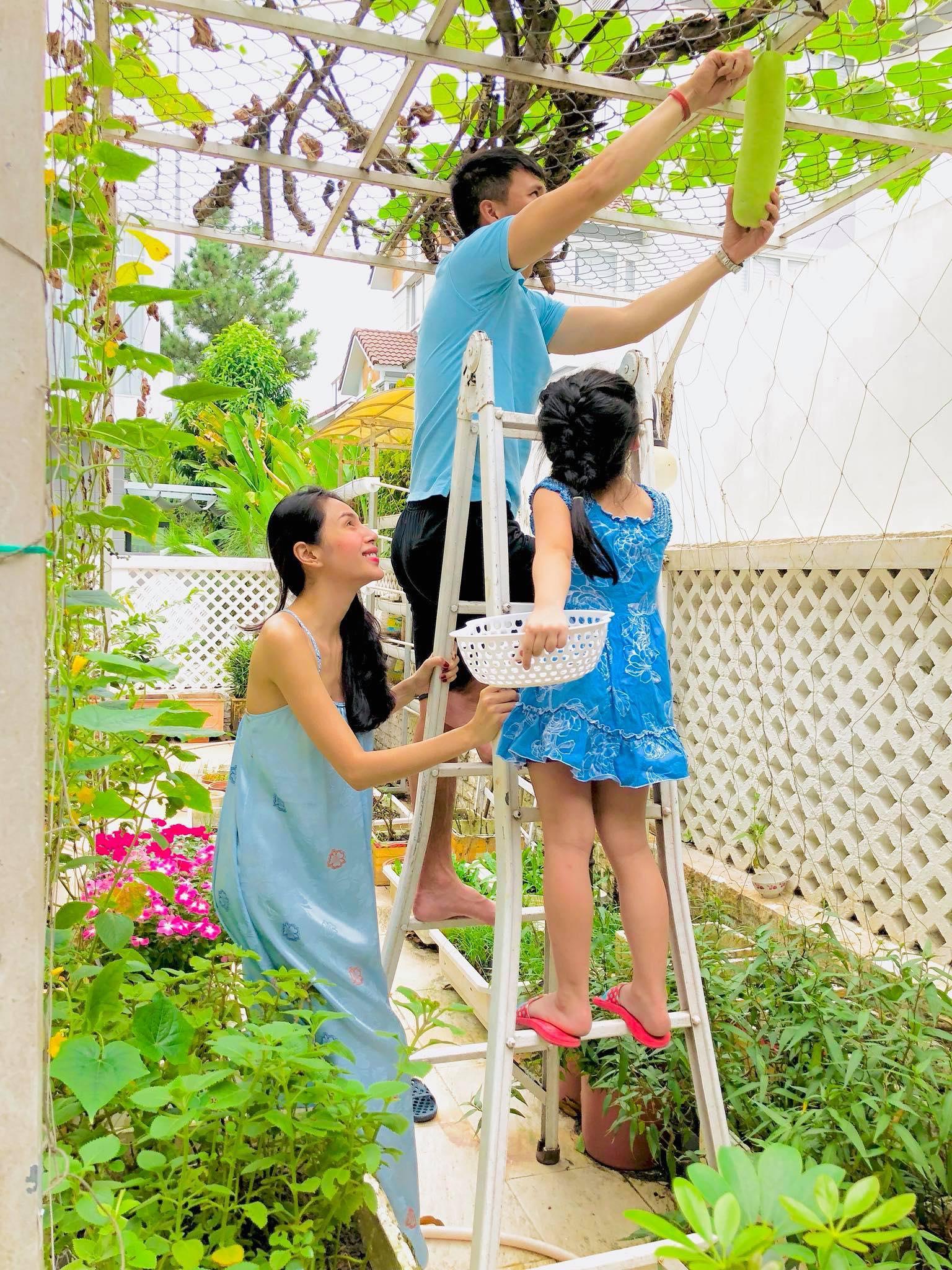 Ngắm vườn rau quả sạch tốt tươi, xanh mát trong biệt thự triệu đô của vợ chồng Thủy Tiên - Công Vinh - Ảnh 5.