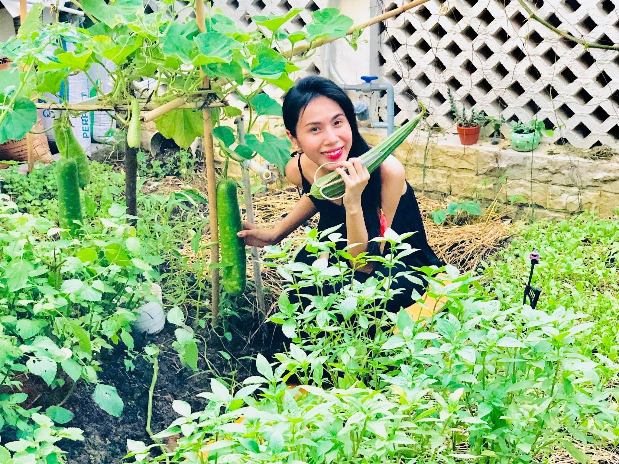 Ngắm vườn rau quả sạch tốt tươi, xanh mát trong biệt thự triệu đô của vợ chồng Thủy Tiên - Công Vinh - Ảnh 1.
