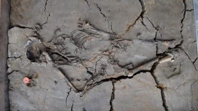 Phát hiện ngôi mộ trẻ em ngàn năm tuổi, các nhà khoa học sững sỡ khi thấy hình ảnh này - Ảnh 1.