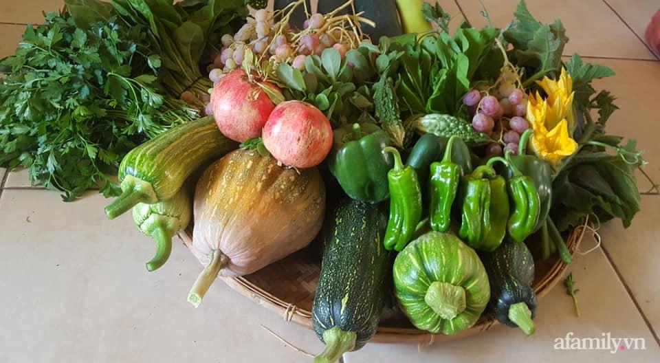 Khu vườn quanh năm tốt tươi rau trái rộng 1000m² của người phụ nữ Việt ở đảo Síp - Ảnh 9.