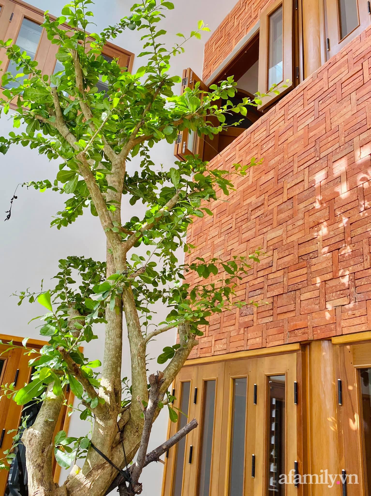 Nhà phố ngập tràn nắng gió và tình yêu thiên nhiên của vợ chồng trẻ ở Quảng Ngãi - Ảnh 6.