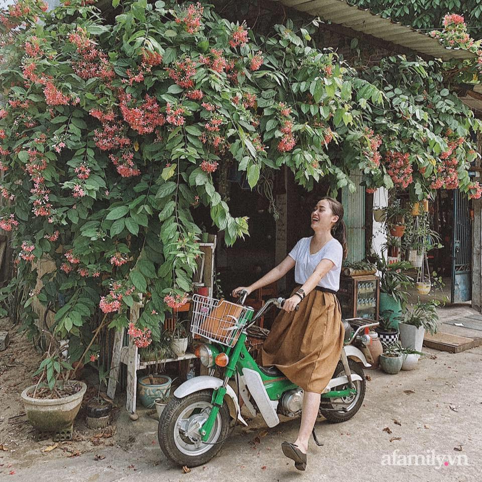 Nhà phố ngập tràn nắng gió và tình yêu thiên nhiên của vợ chồng trẻ ở Quảng Ngãi - Ảnh 1.