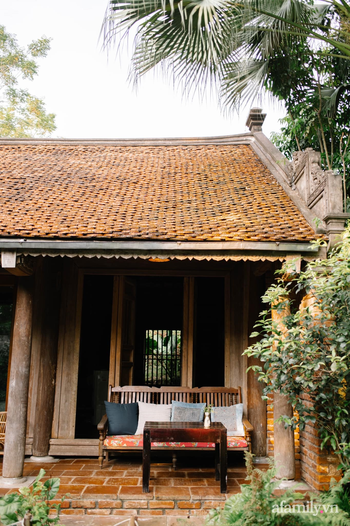 Cải tạo không gian rêu phong thành nhà vườn gói ghém những bình yên của người phụ nữ Hà Thành - Ảnh 7.