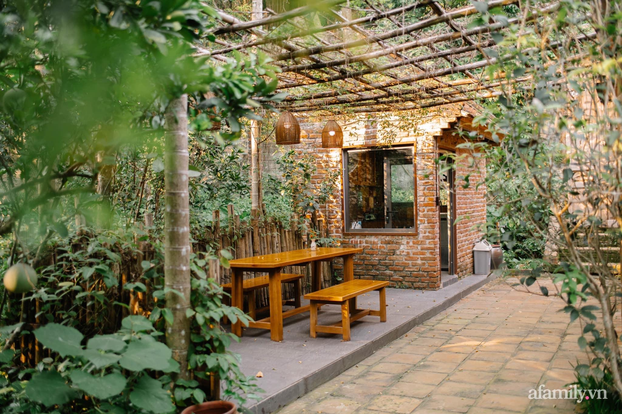 Cải tạo không gian rêu phong thành nhà vườn gói ghém những bình yên của người phụ nữ Hà Thành - Ảnh 3.