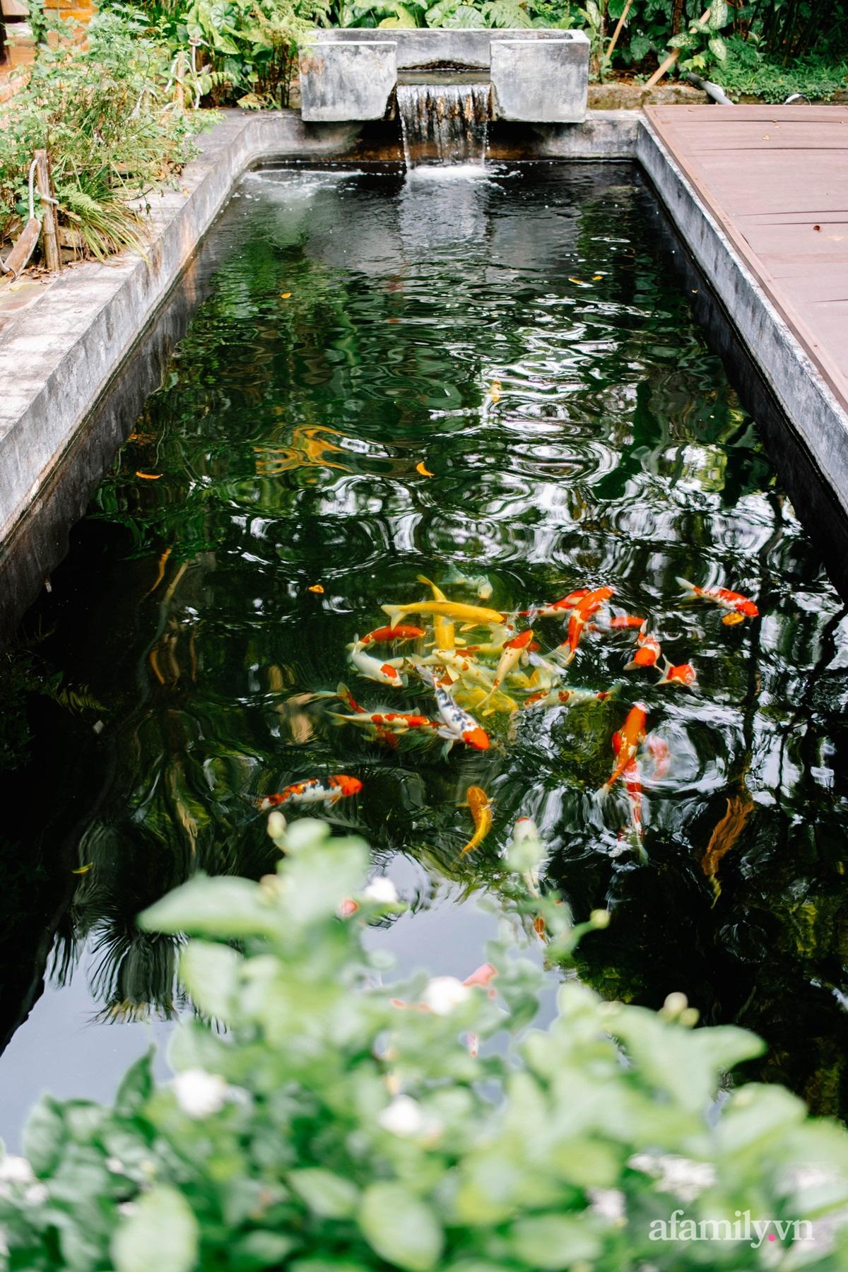 Cải tạo không gian rêu phong thành nhà vườn gói ghém những bình yên của người phụ nữ Hà Thành - Ảnh 9.