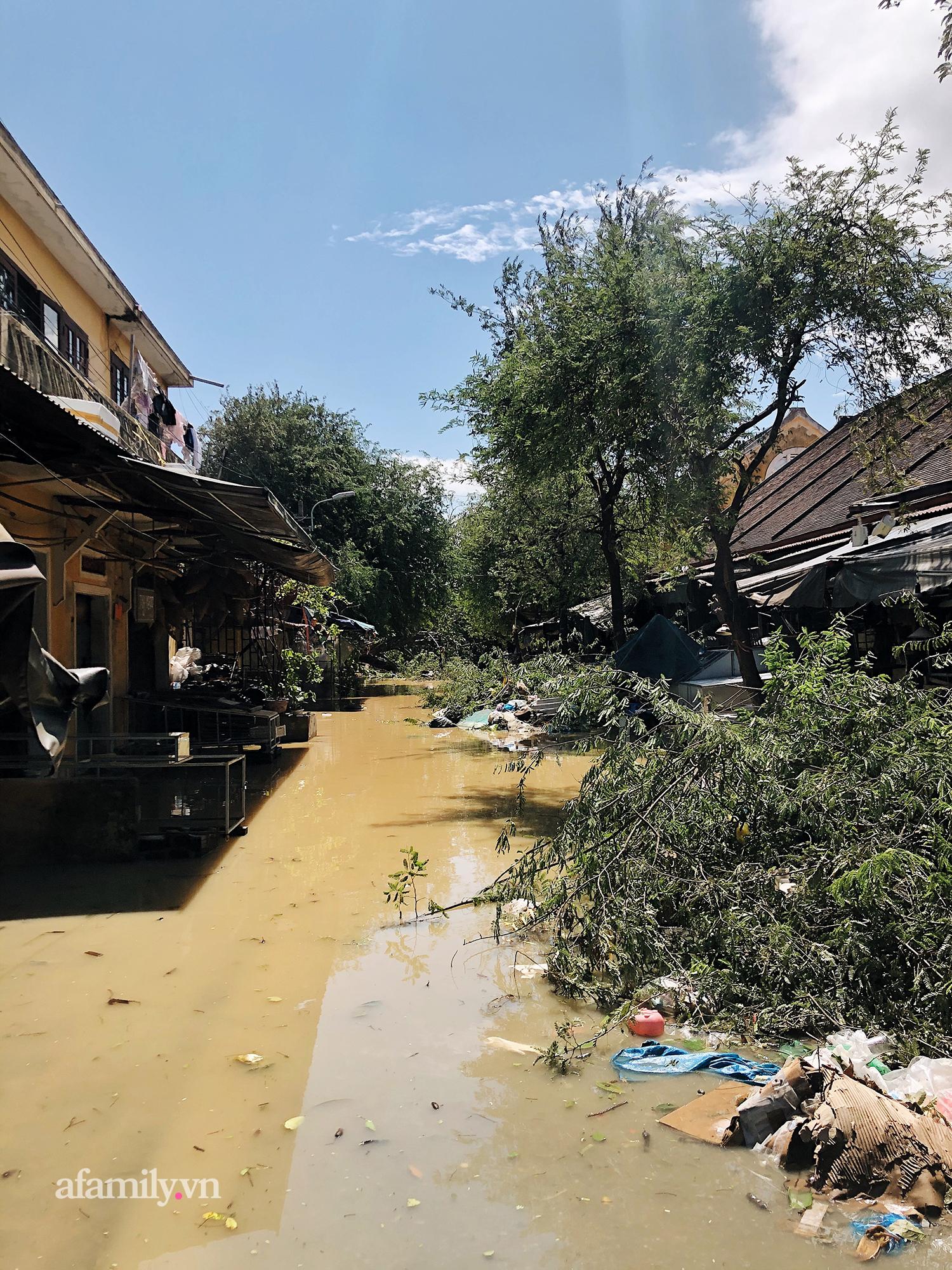 Hội An tan hoang sau bão số 9, những rặng hoa giấy rực rỡ ngày thường nay bỗng hóa xác xơ, nước sông Hoài dâng lên ngập cả nhiều tuyến đường trung tâm phố cổ - Ảnh 9.