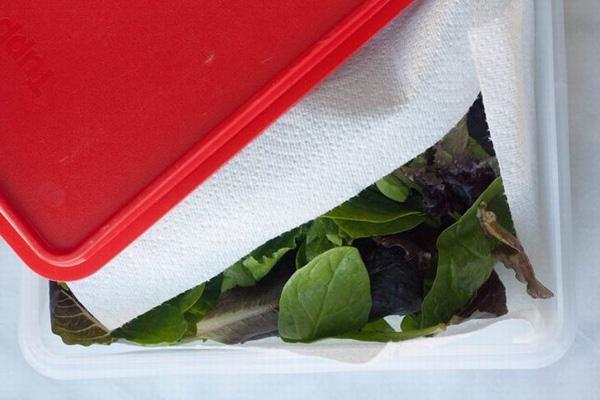 Chỉ với vật dụng quen thuộc này, chị em có thể bảo quản rau củ trong tủ lạnh cả 1 tuần, đảm bảo rau vẫn tươi xanh như vừa mới mua! - Ảnh 4.