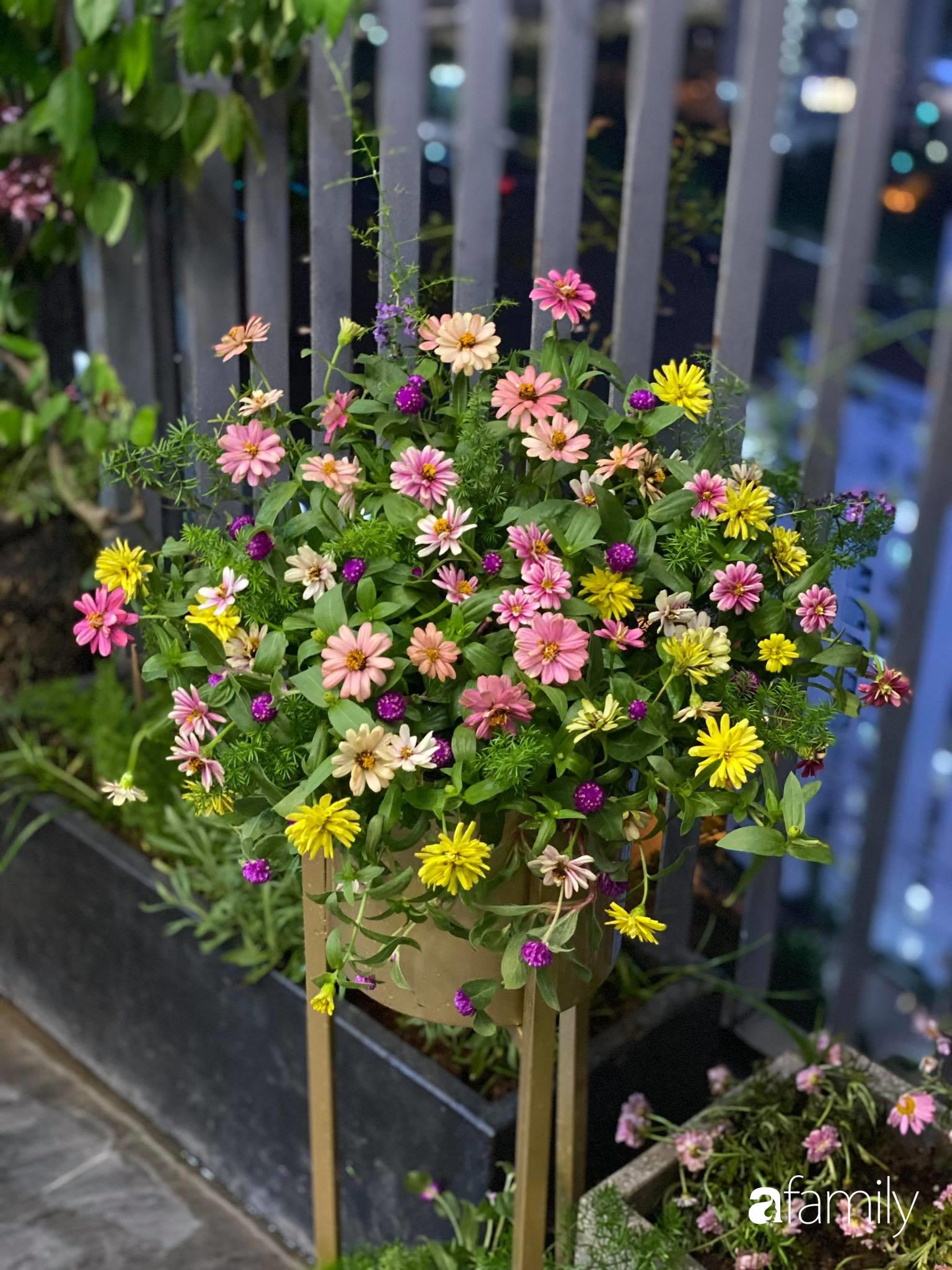 Ban công căn hộ thông tầng đẹp lãng mạn với cây và hoa ở Hà Nội - Ảnh 16.