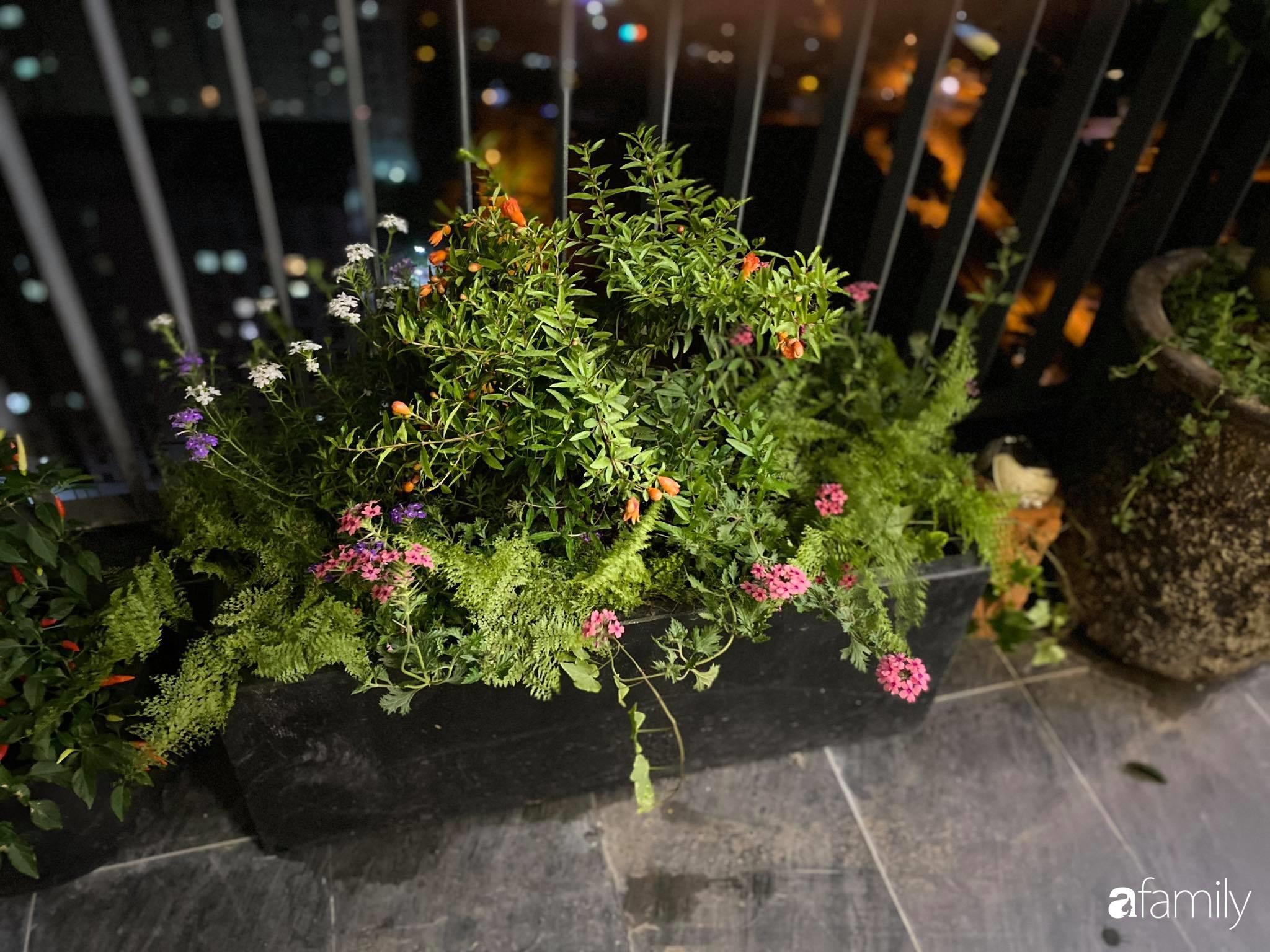Ban công căn hộ thông tầng đẹp lãng mạn với cây và hoa ở Hà Nội - Ảnh 12.