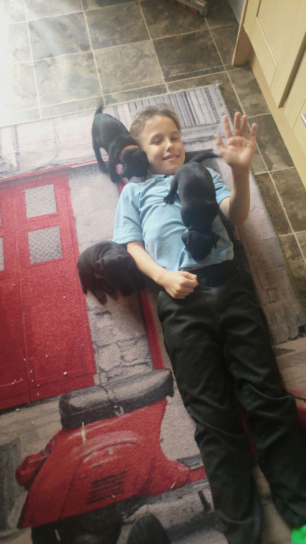 Bé trai 9 tuổi bị mù vĩnh viễn sau khi chiếu tia sáng từ một món đồ chơi vào mắt 2 giây - Ảnh 3.