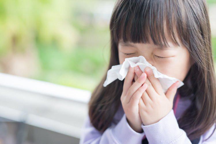 Bí quyết giúp mẹ bảo vệ hệ hô hấp của cả gia đình đúng cách - Ảnh 1.