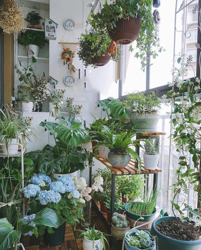 Vì yêu hoa, cô gái xinh như mộng mua ngay căn hộ áp mái để trồng cả vườn hồng trên sân thượng rộng 33m² - Ảnh 14.