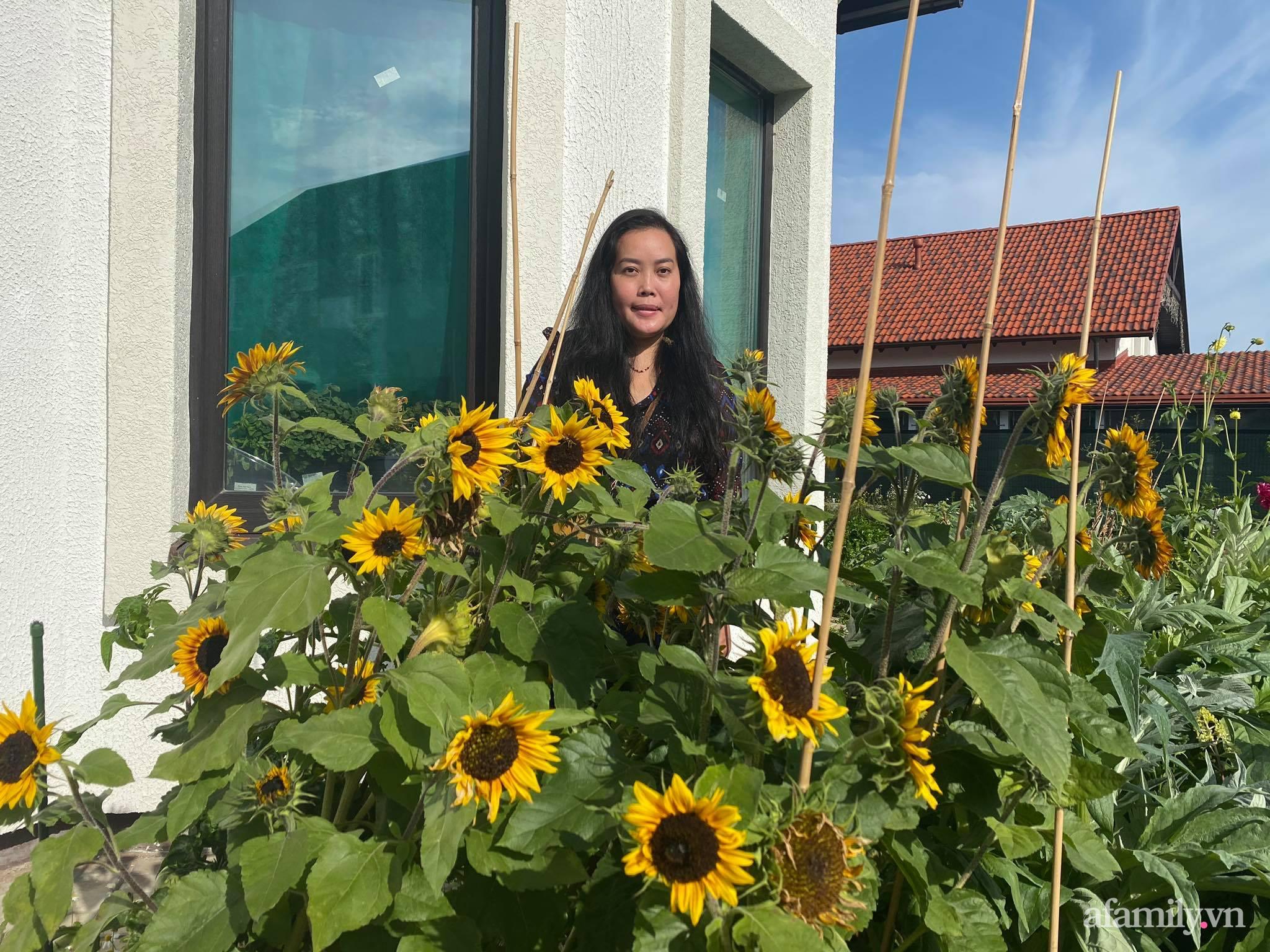 Khu vườn ngát hương hoa, tươi xanh màu rau củ của nữ giám đốc Việt ở Nga - Ảnh 2.