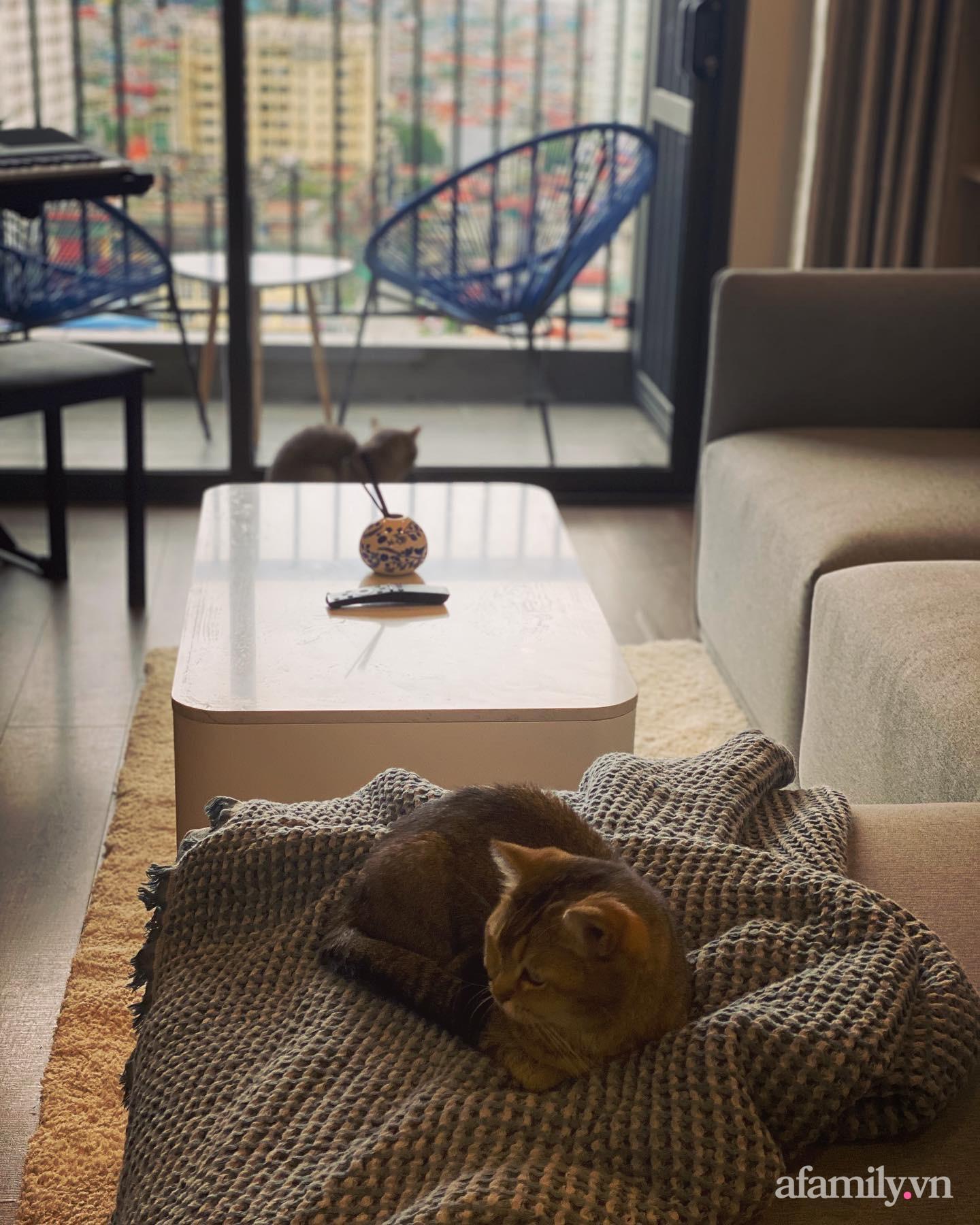 Chi 200 triệu đồng, blogger du lịch Sài Gòn thiết kế căn hộ tối giản rộng 83m² đẹp không góc chết nhờ đặt ra 5 nguyên tắc vàng - Ảnh 24.
