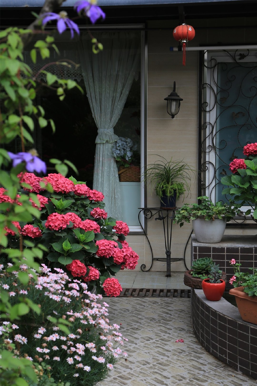 """Khu vườn quanh năm chỉ có """"mùa xuân"""" ở lại của cô giáo dạy Toán xinh đẹp - Ảnh 12."""