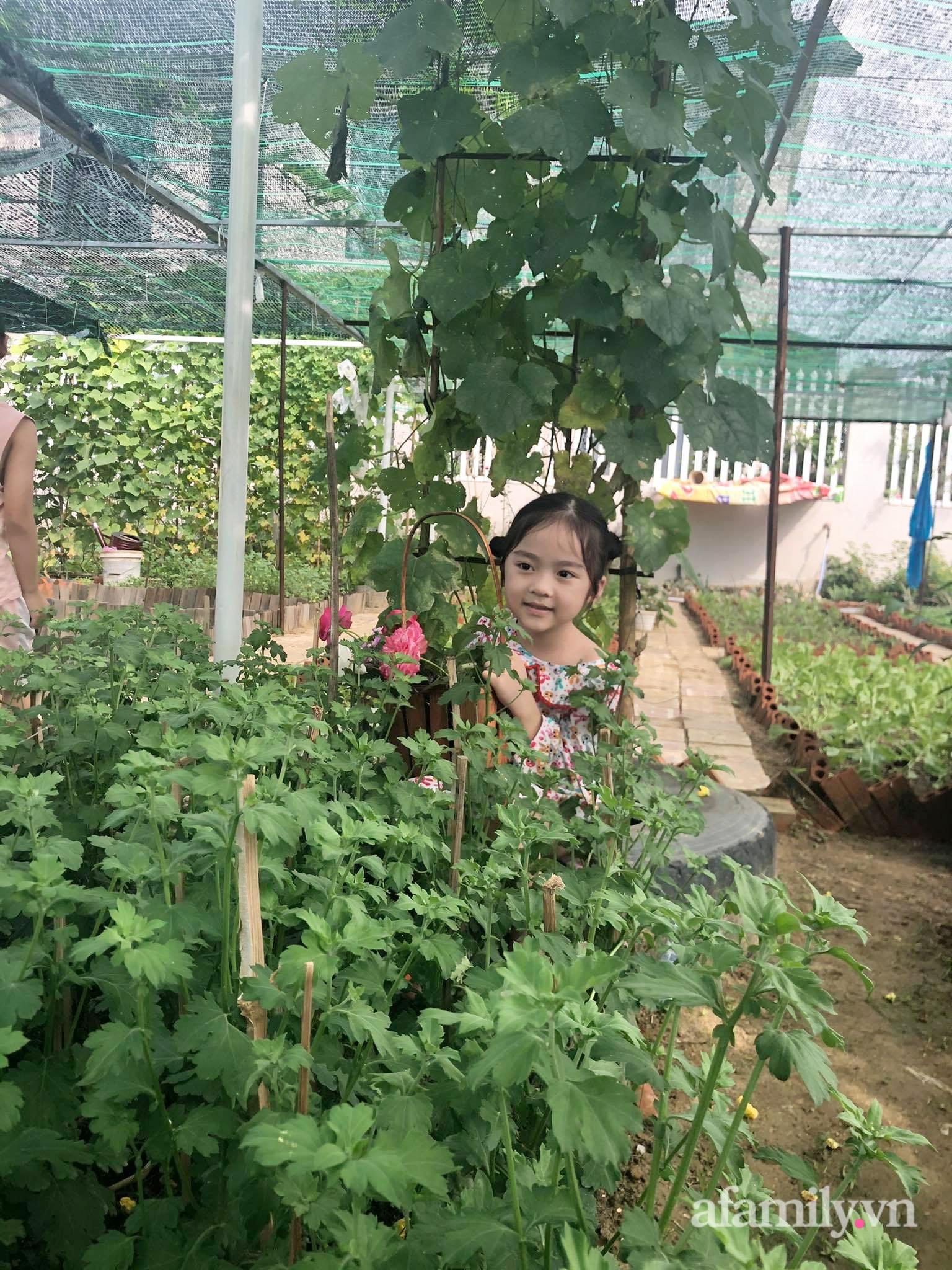 Vườn 500m² được quy hoạch khoa học để trồng đủ các loại rau quả sạch của mẹ đảm ở Quy Nhơn - Ảnh 5.