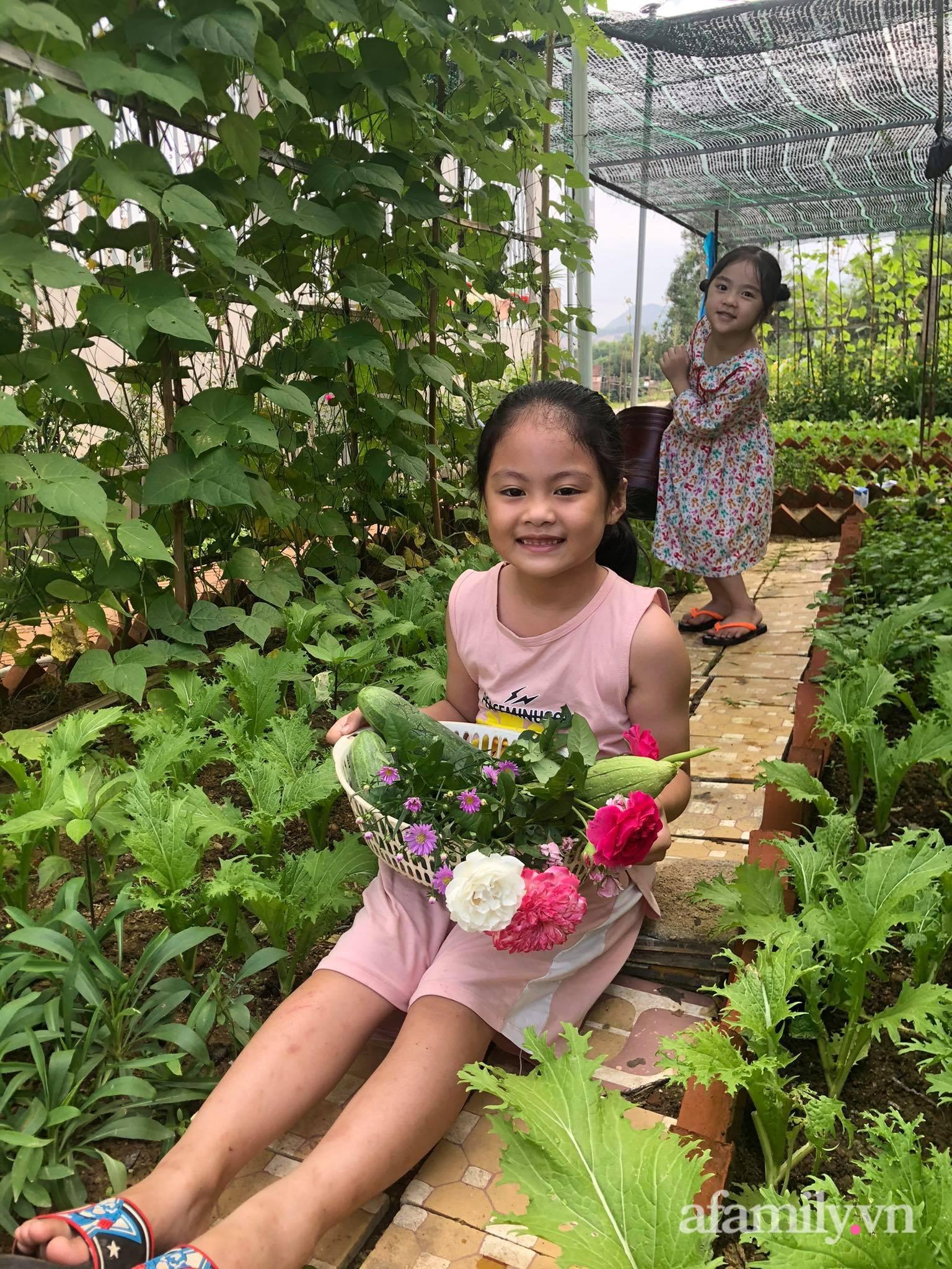 Vườn 500m² được quy hoạch khoa học để trồng đủ các loại rau quả sạch của mẹ đảm ở Quy Nhơn - Ảnh 3.