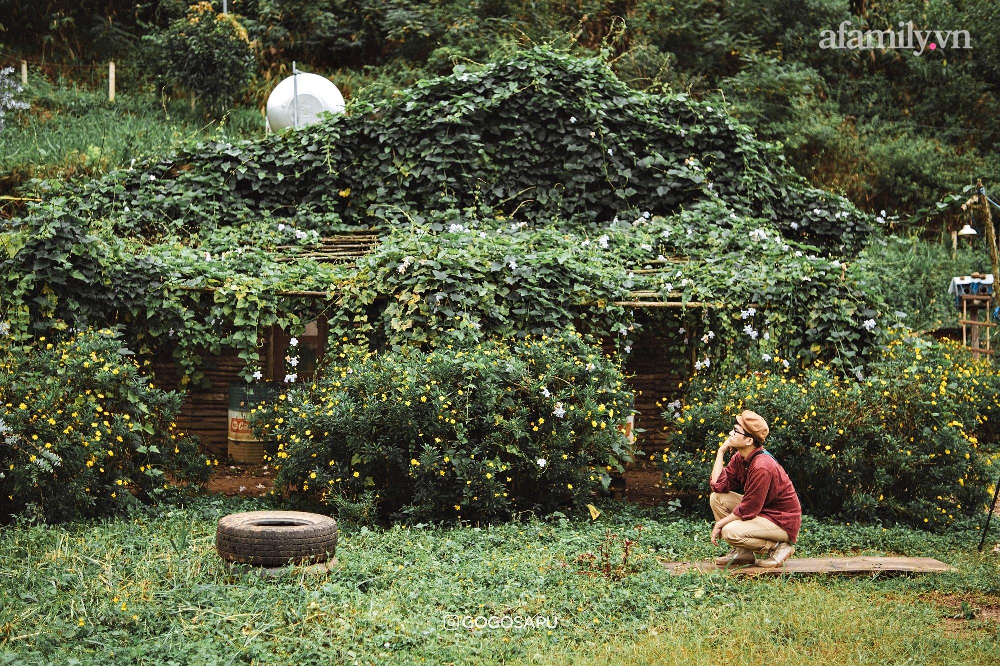 """Thung lũng """"bí ẩn"""" lạ lẫm ở Đà Lạt: Có hoa vàng cỏ xanh, suối mát lành đẹp như tranh vẽ, nhưng không phải cứ muốn đến là được, cũng chẳng có 3G để xài! - Ảnh 5."""