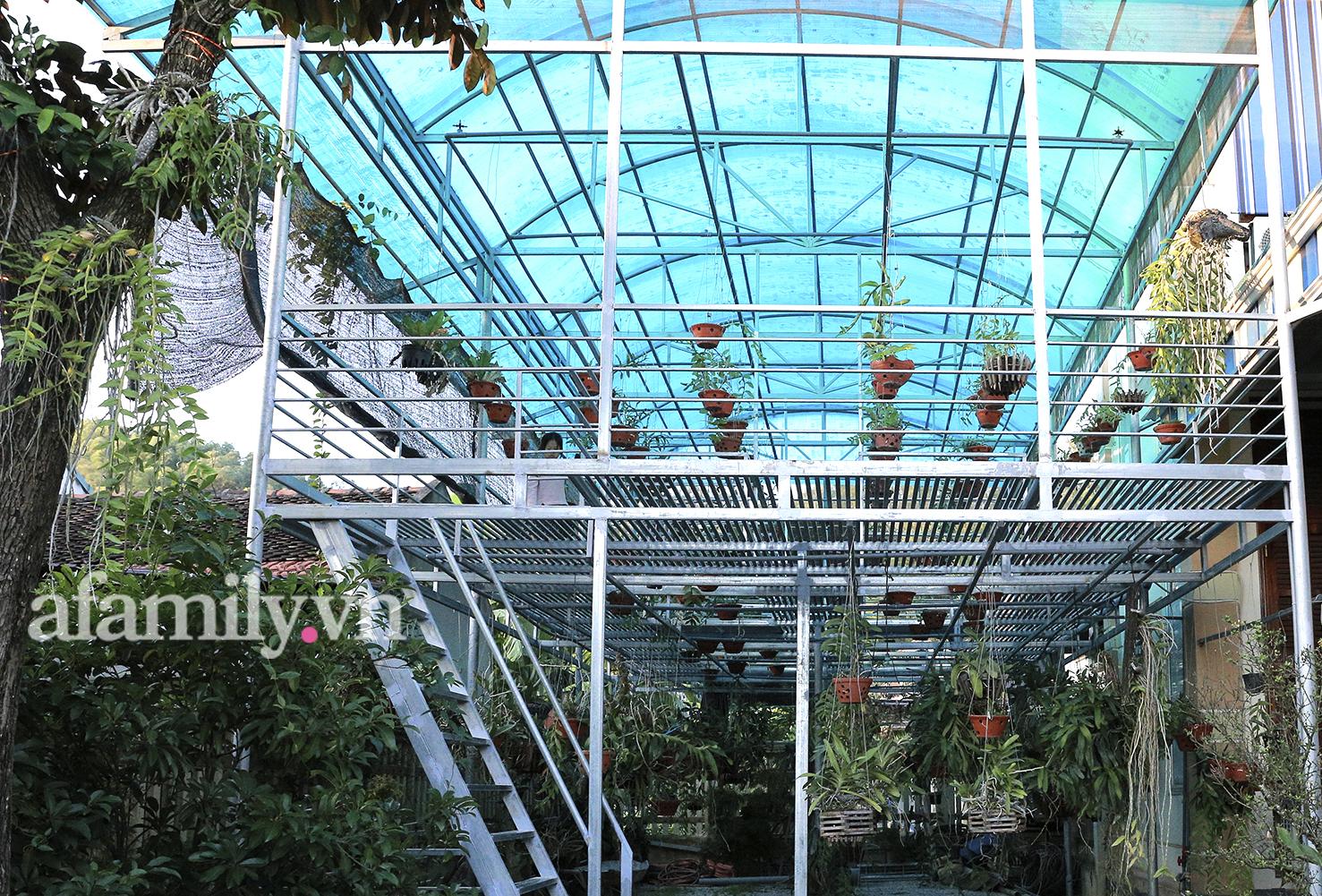Ngắm vườn tược siêu rộng nhà tân Hoa hậu Việt Nam 2020: Dân sành chỉ chăm soi giàn lan siêu khủng giá trị có thể đến tiền tỷ - Ảnh 7.