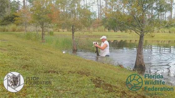 Cụ ông 74 tuổi tay không cậy mồm cá sấu giải cứu chó cưng - Ảnh 3.