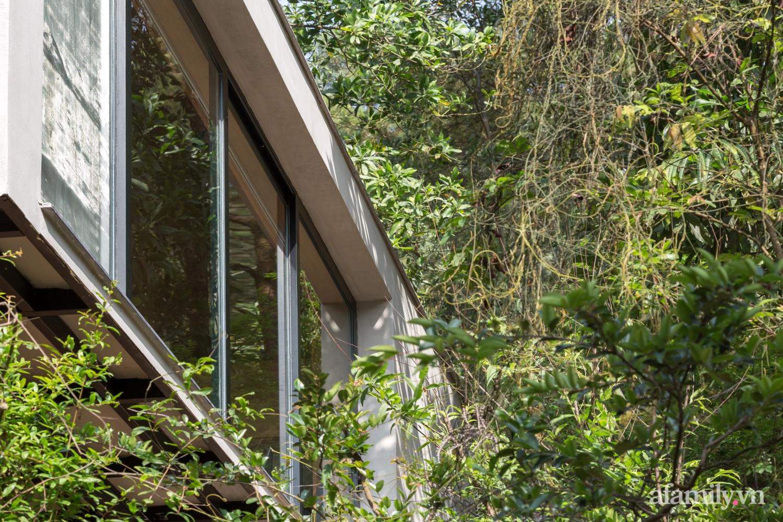 """Ngôi nhà nhỏ 40m² chênh vênh trên núi """"tắm"""" trọn ánh nắng và bóng cây ở ngoại ô Hà Nội - Ảnh 4."""