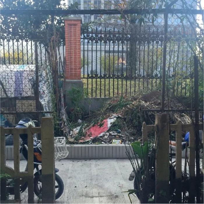 Cặp vợ chồng phá bỏ sân đầy rác và cỏ dại, cải tạo thành khu vườn ai cũng muốn ghé thăm - Ảnh 9.