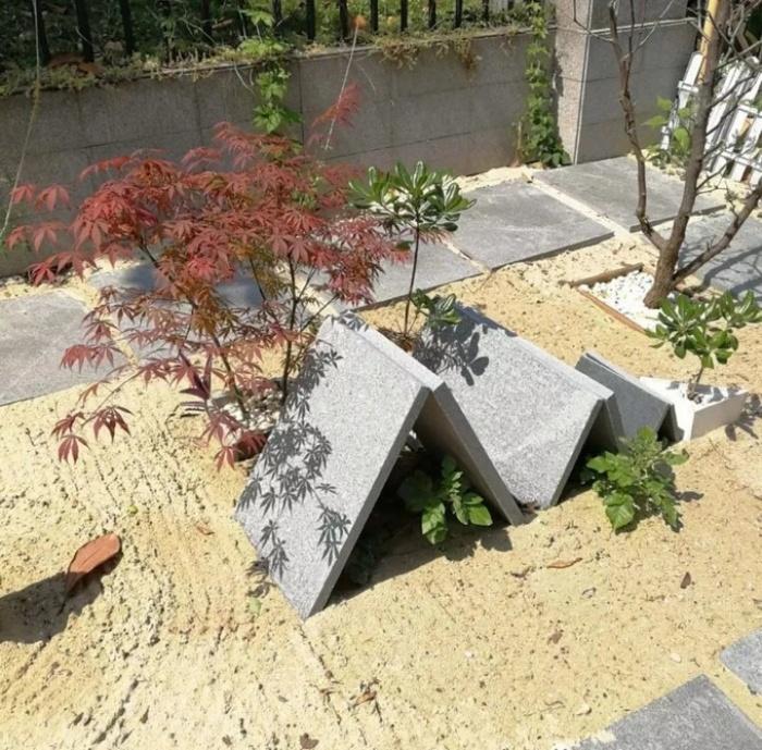 Cặp vợ chồng phá bỏ sân đầy rác và cỏ dại, cải tạo thành khu vườn ai cũng muốn ghé thăm - Ảnh 10.