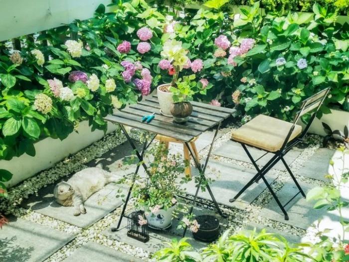 Cặp vợ chồng phá bỏ sân đầy rác và cỏ dại, cải tạo thành khu vườn ai cũng muốn ghé thăm - Ảnh 5.