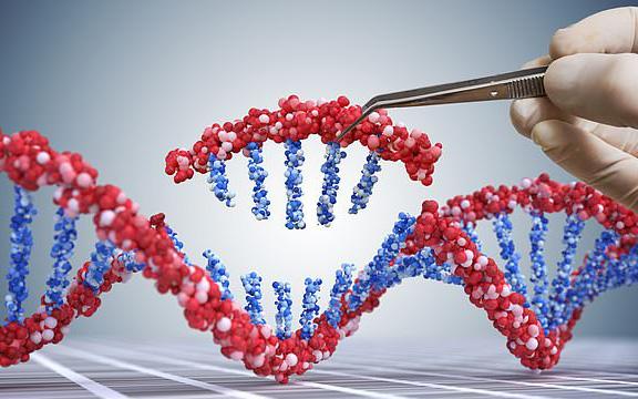 Các nhà khoa học tìm ra cách tiêu diệt tế bào ung thư bằng công nghệ mới đột phá, không gây tác dụng phụ