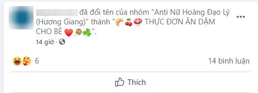 Thật như đùa: Group anti Hương Giang gần 20k thành viên bất ngờ đổi tên, antifan thất vọng khi mò vào toàn thấy kinh nghiệm nuôi dạy con - Ảnh 3.