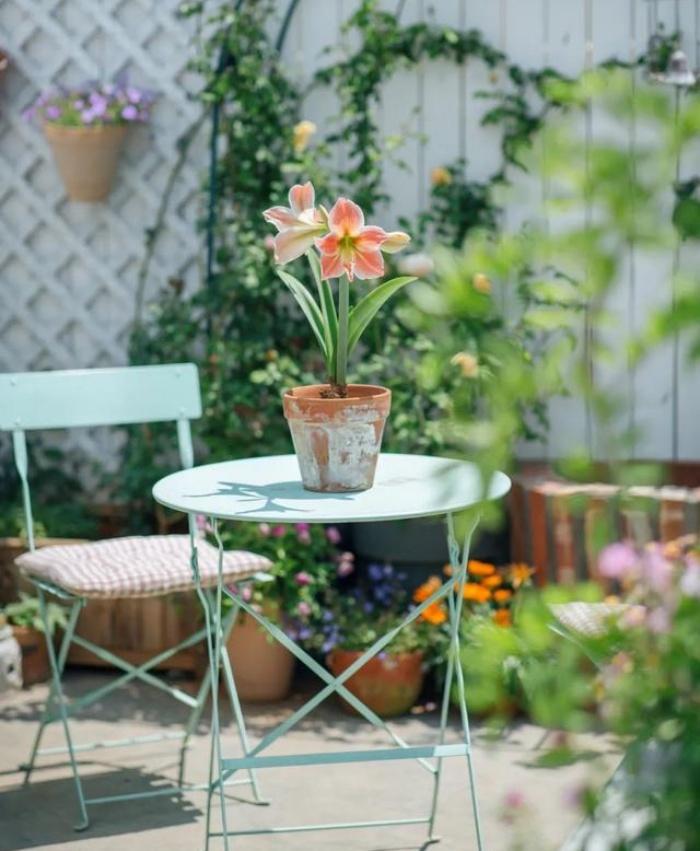 Vì yêu hoa, cô gái xinh như mộng mua ngay căn hộ áp mái để trồng cả vườn hồng trên sân thượng rộng 33m² - Ảnh 9.