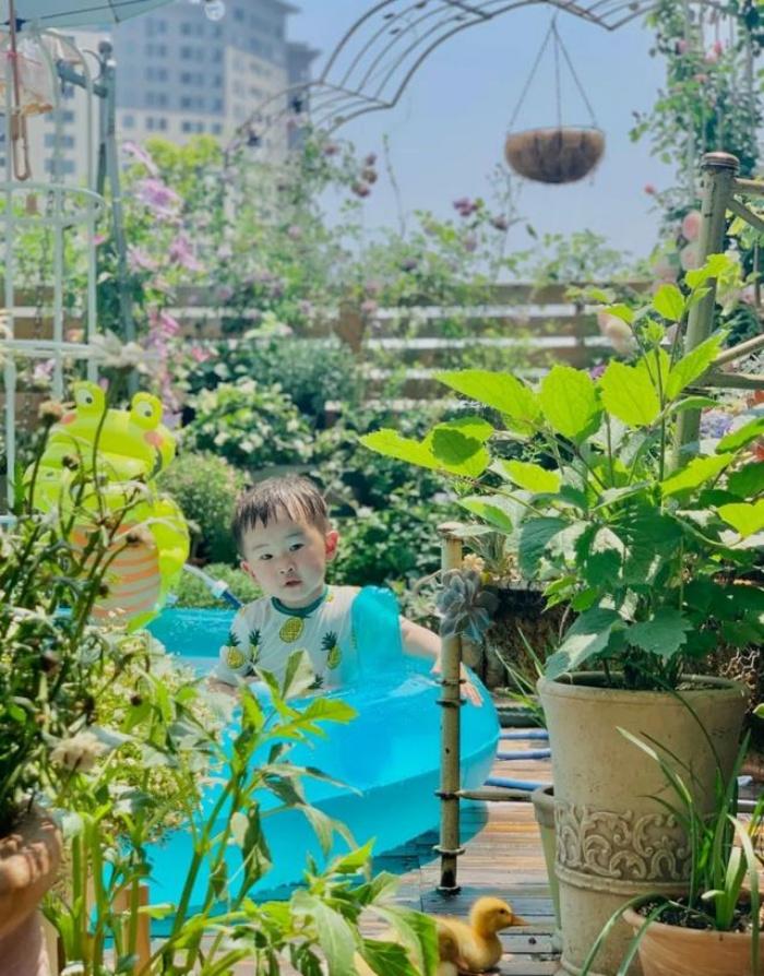 Vì yêu hoa, cô gái xinh như mộng mua ngay căn hộ áp mái để trồng cả vườn hồng trên sân thượng rộng 33m² - Ảnh 10.