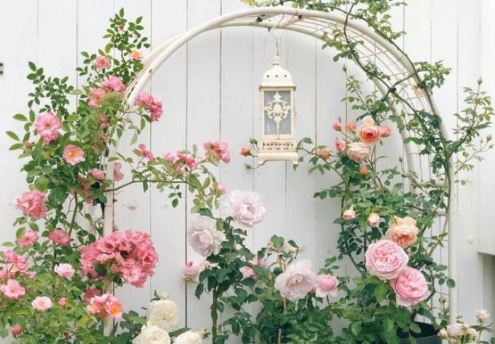 Vì yêu hoa, cô gái xinh như mộng mua ngay căn hộ áp mái để trồng cả vườn hồng trên sân thượng rộng 33m² - Ảnh 1.