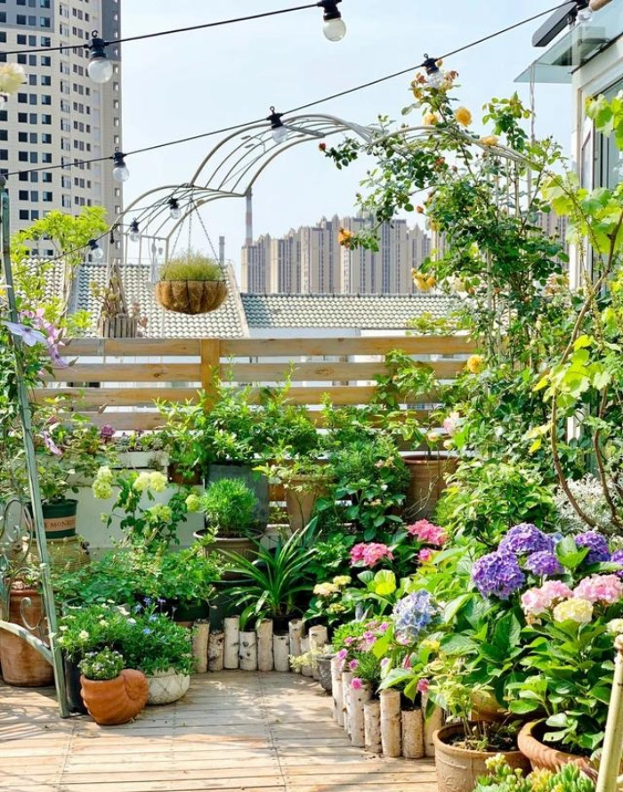 Vì yêu hoa, cô gái xinh như mộng mua ngay căn hộ áp mái để trồng cả vườn hồng trên sân thượng rộng 33m² - Ảnh 7.