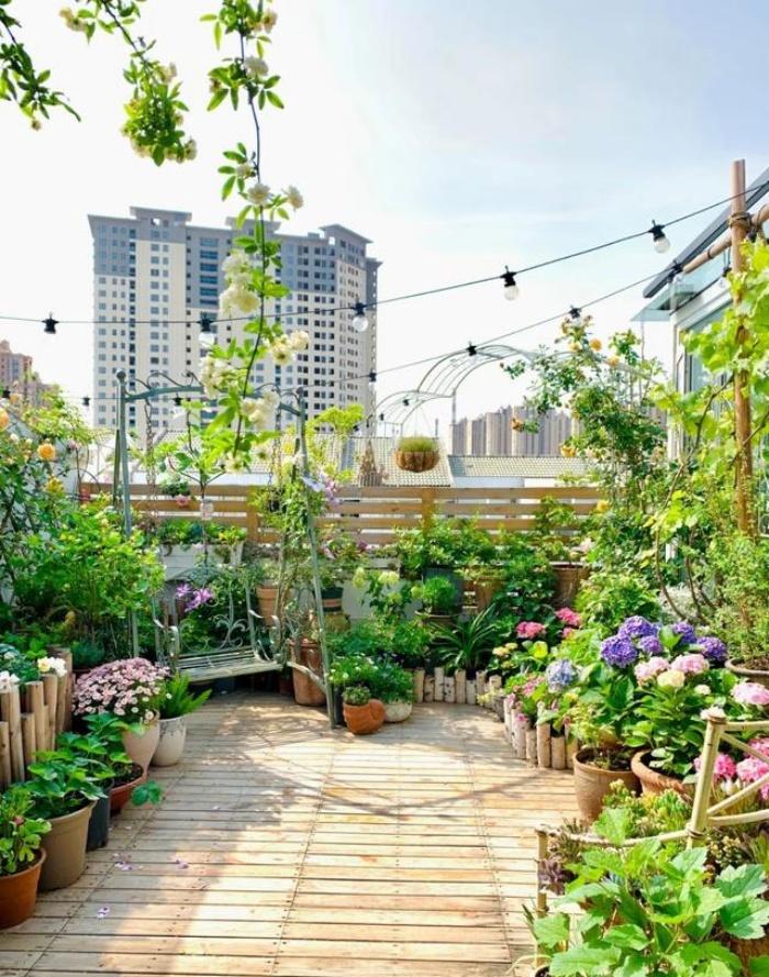 Vì yêu hoa, cô gái xinh như mộng mua ngay căn hộ áp mái để trồng cả vườn hồng trên sân thượng rộng 33m² - Ảnh 6.