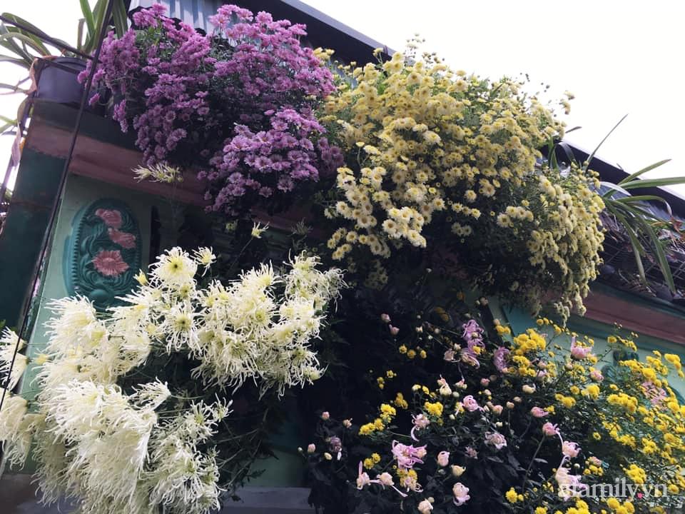 Ngôi nhà ngập tràn sắc màu hoa cúc đẹp lãng mạn của cô giáo phố núi Sơn La - Ảnh 2.