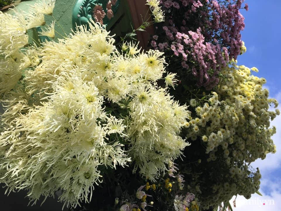 Ngôi nhà ngập tràn sắc màu hoa cúc đẹp lãng mạn của cô giáo phố núi Sơn La - Ảnh 3.